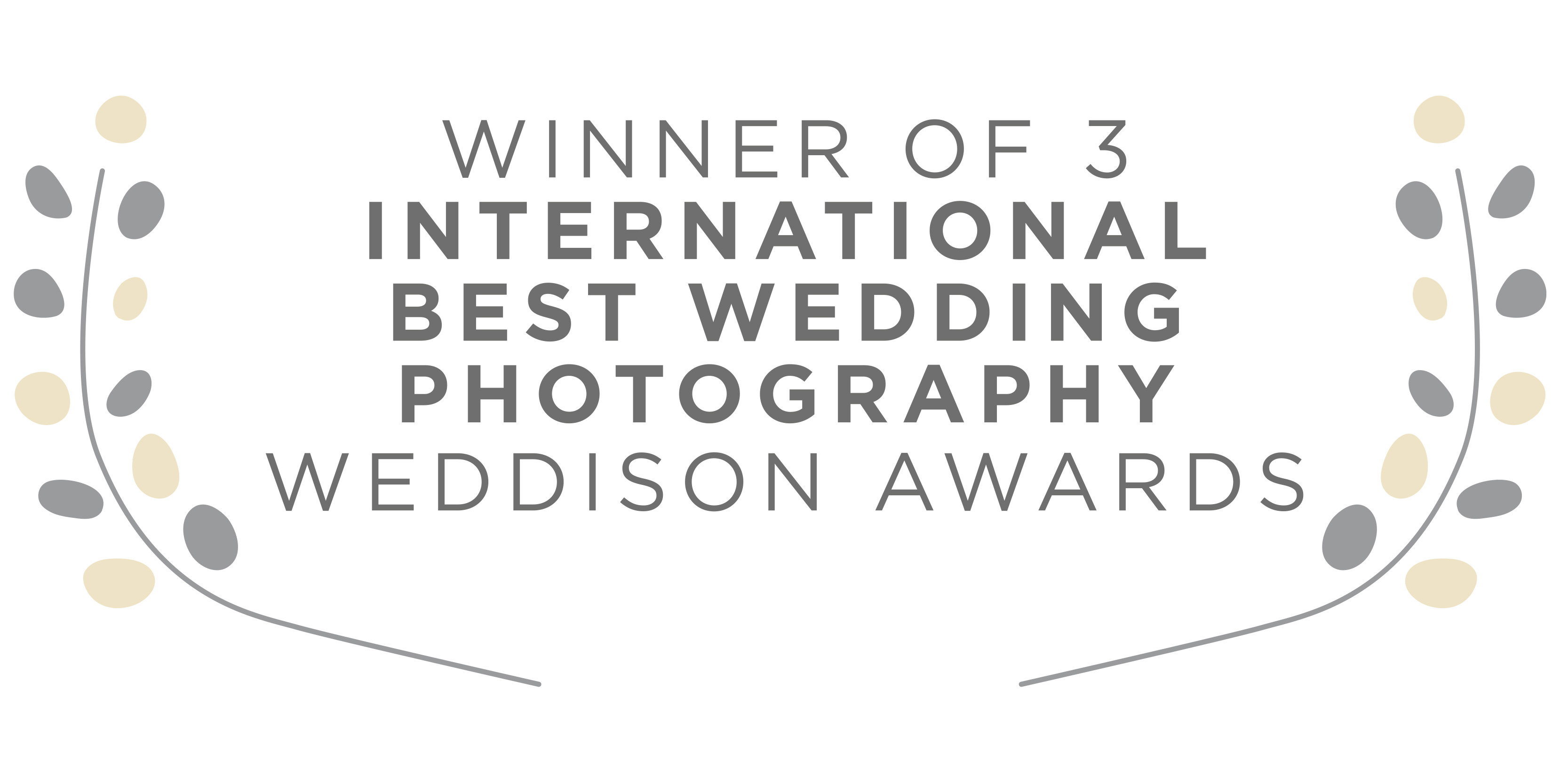 Weddison Award Winning Photographer