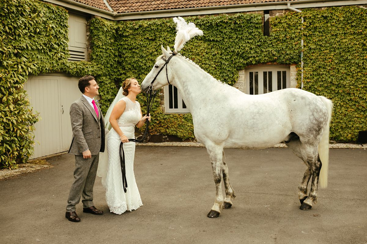 White horse as a wedding surprise in Devon